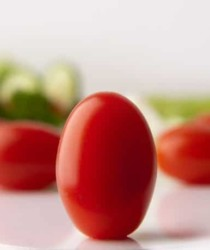 nutritious tomatoes and healthy foods for weight loss